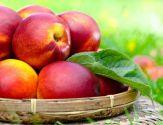 bienfaits et vertus de la nectarine pour la santé