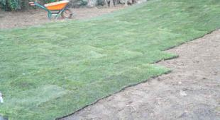 r nover une pelouse un gazon vid o. Black Bedroom Furniture Sets. Home Design Ideas