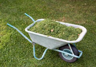 herbe tonte compost