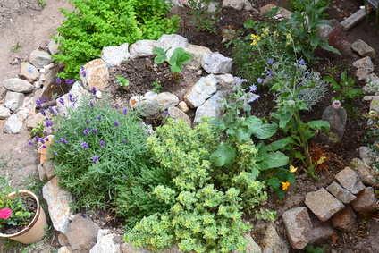 permaculture biodiversite autonomie
