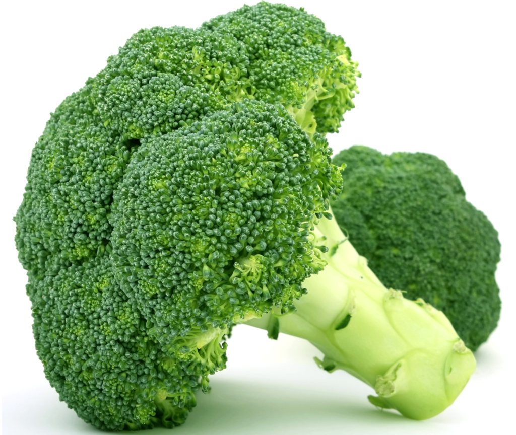 Health benefits of broccoli, a single head laying on a white table with a white background.