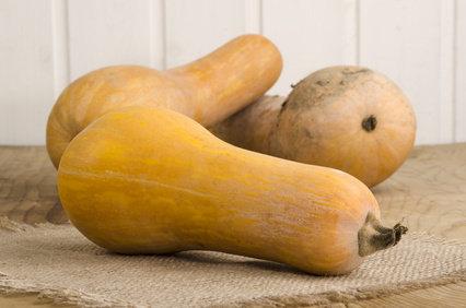 Butternut semis culture et r colte de la courge butternut - Quand cueillir les potirons ...