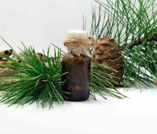 cèdre atlas huiles essentielles
