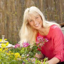 menopause plantes