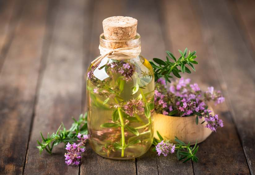 Thyme health benefits and therapeutic value