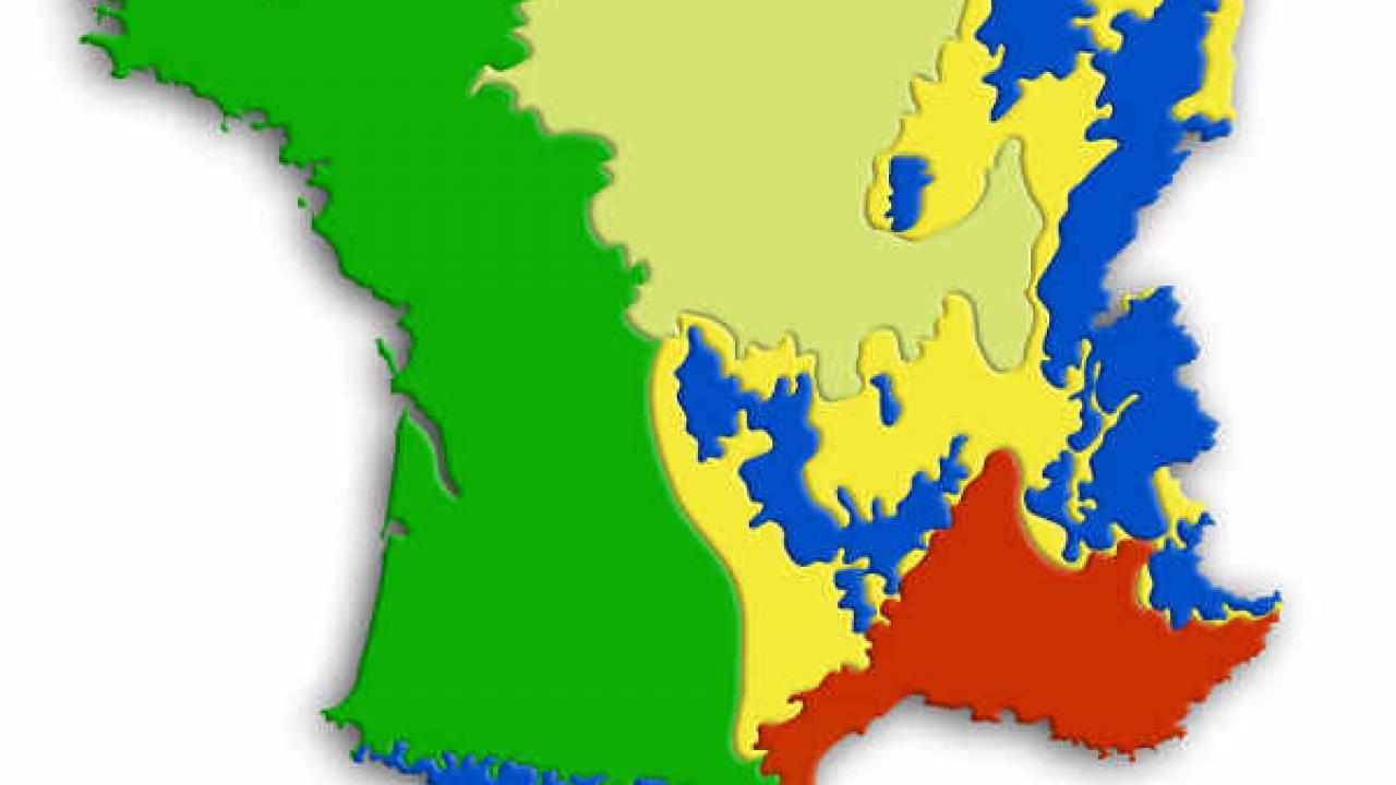 Quel Semis Faire En Septembre un calendrier de plantation par région pour optimiser son