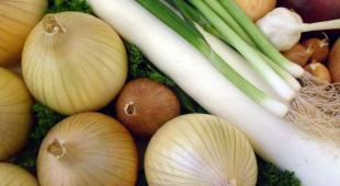 Allium vegetables and spices including onion, garlic, leek and bunching onion fill the image, ready to be cooked with insparsed parsley to combat cancer.