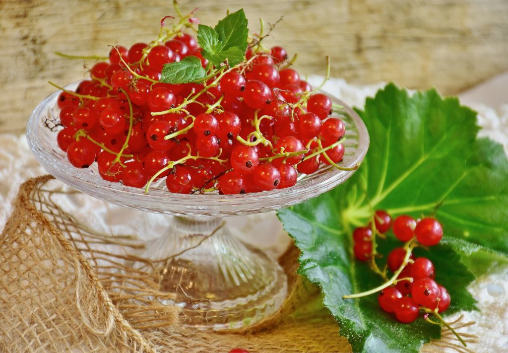 Red currant health benefits and therapeutic value