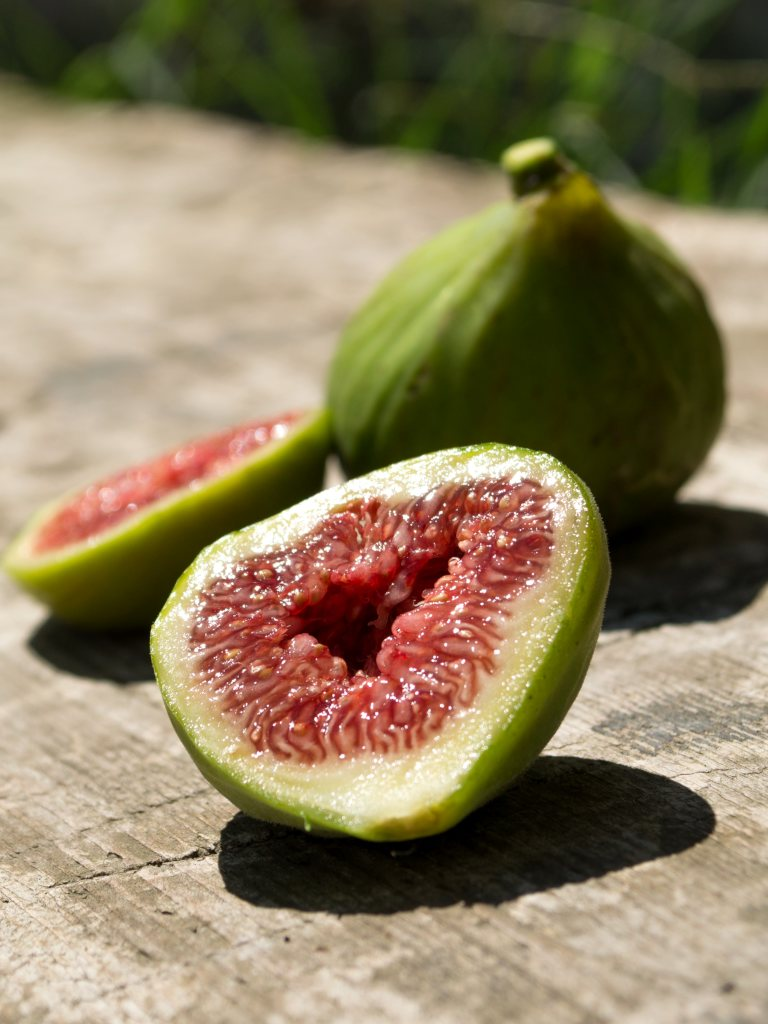 Fig health benefits and therapeutic value