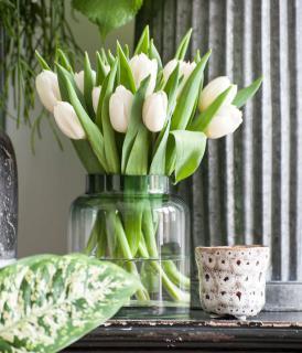 bouquet tulipe