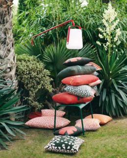 jardin tendance palmier