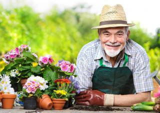 jardinage mai