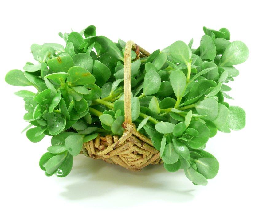 pourpier legume bienfaits