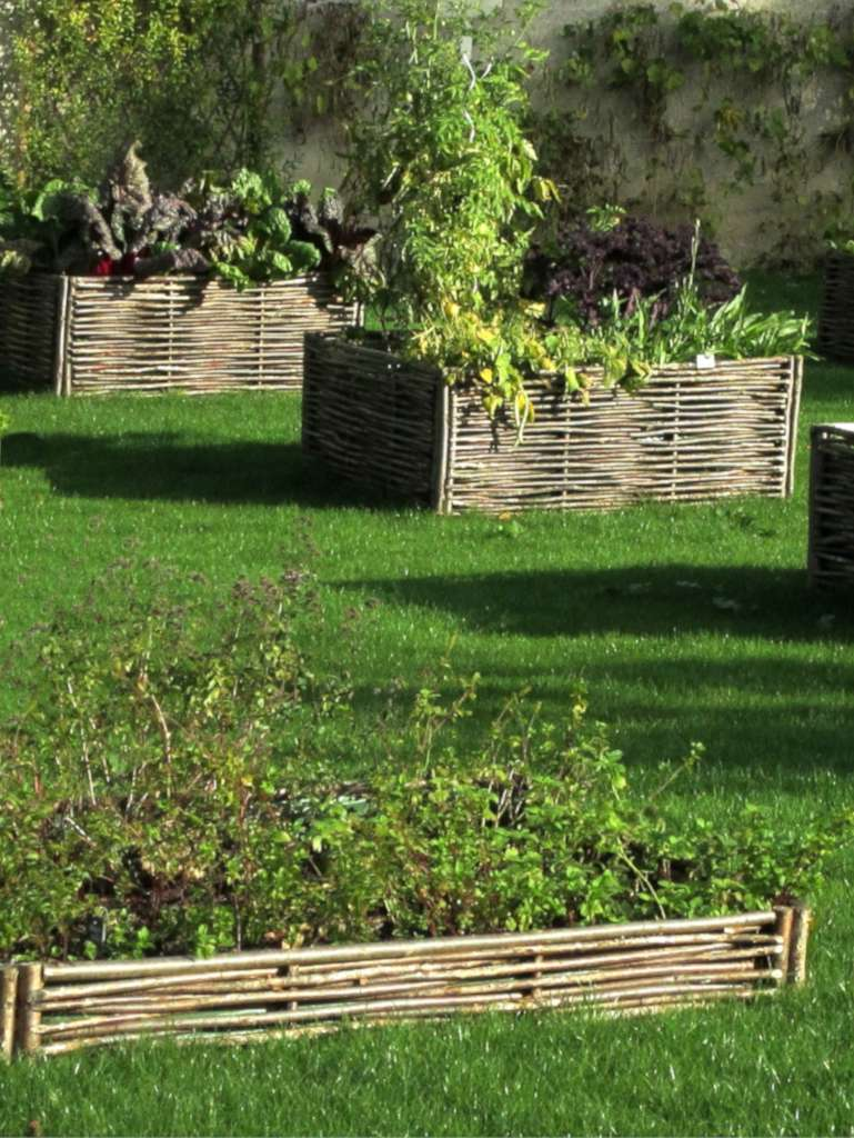 A few raised garden beds of different sizes in a lawn-covered plot.