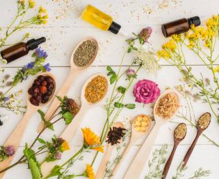 Nephrite traitement naturel plantes