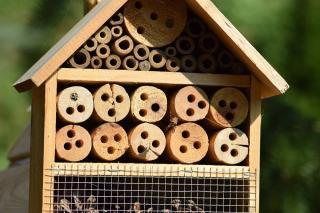 cabane maison insecte attirer jardin animaux
