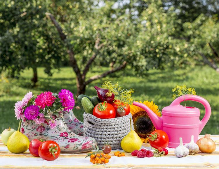 Jardiner Malin Calendrier Lunaire 2021 Septembre au jardin : quels travaux de jardinage