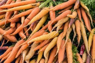 varietes de carottes