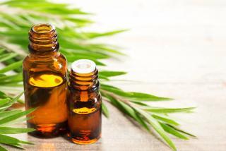 Tea tree bienfaits huile essentielle