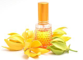 Ylang ylang huile essentielle