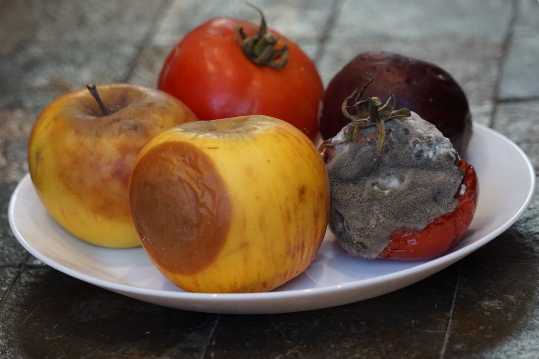 A plate with molding food like apples, prunes and tomato.