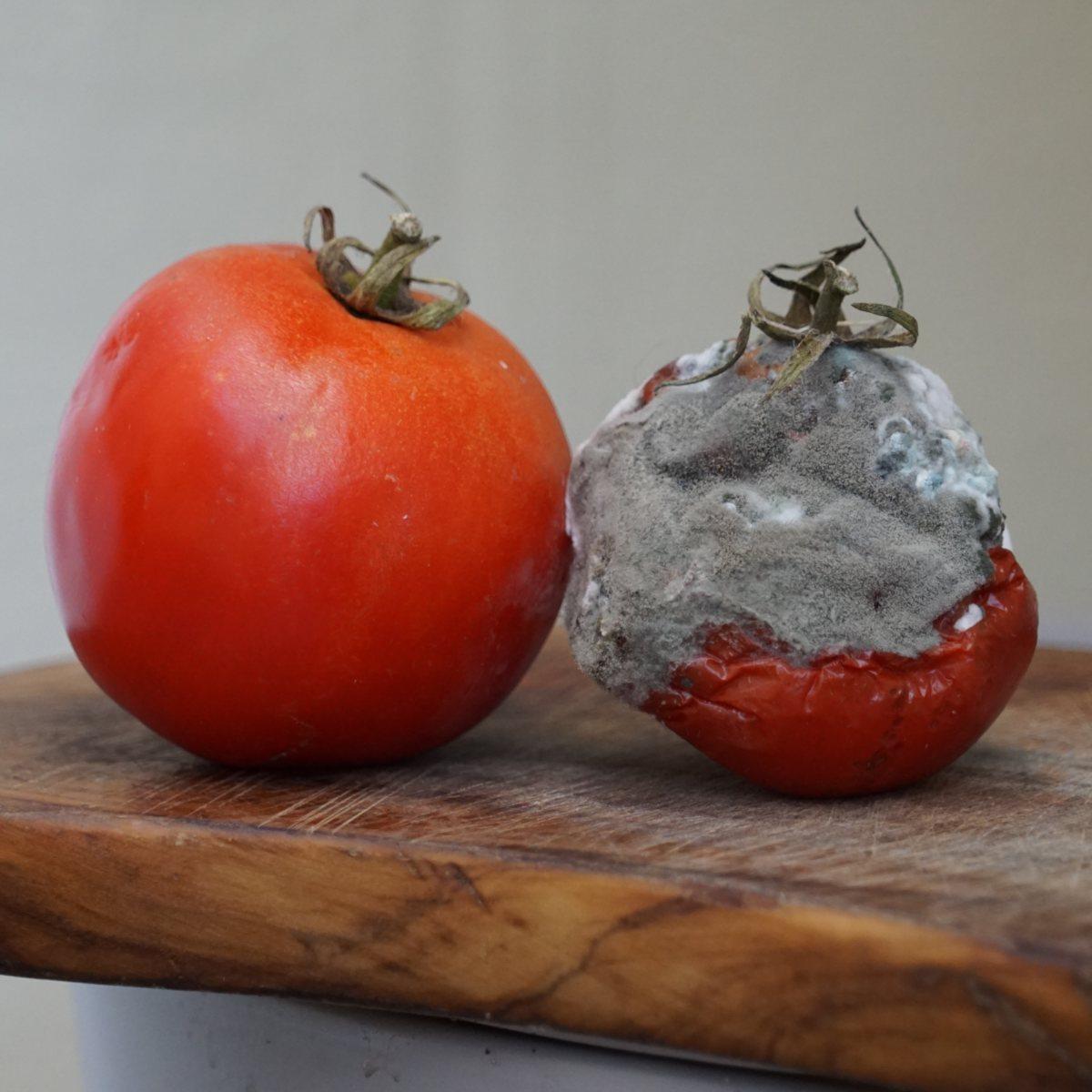 Moldy food, fruits & vegetables – safe to eat?