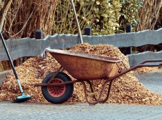 travaux jardinage decembre