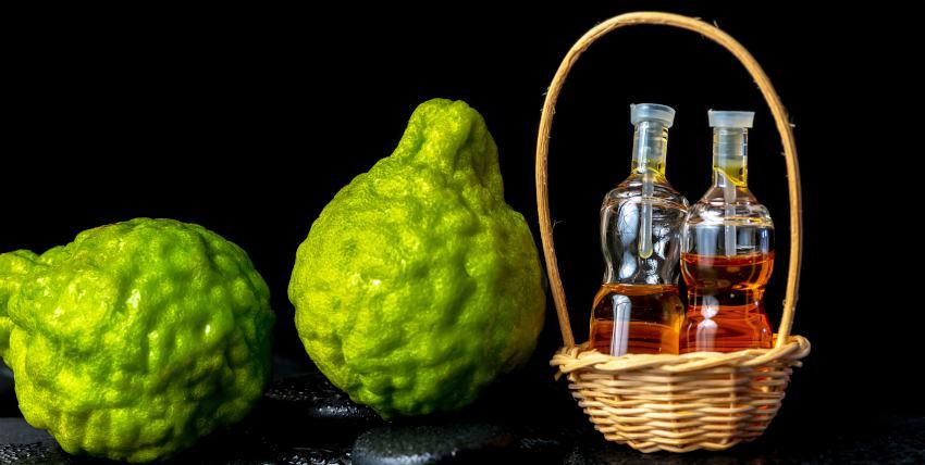 Bienfaits Bergamote - huile essentielle