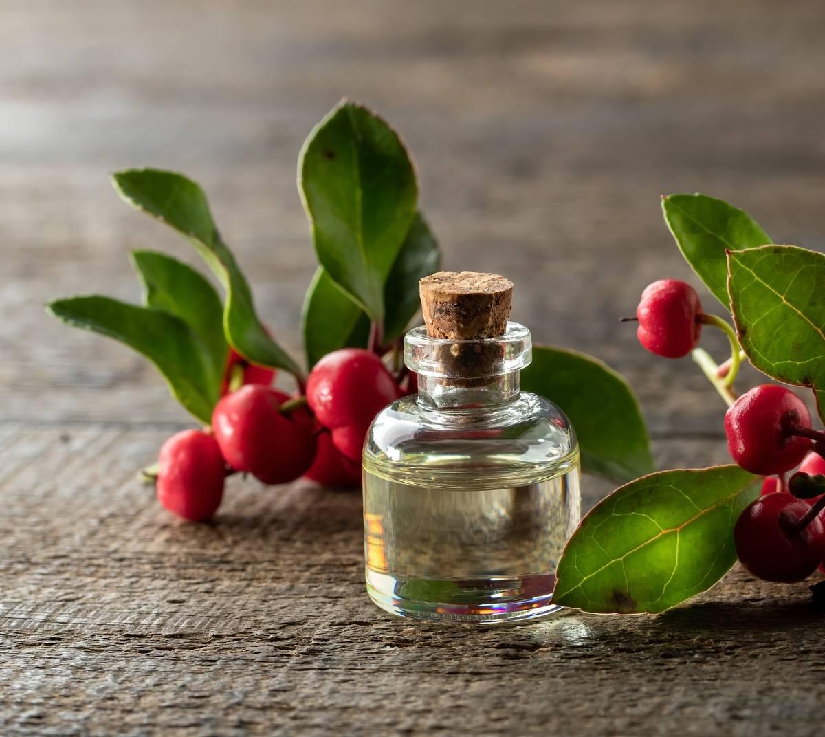 Gaultherie bienfaits anti inflammatoire