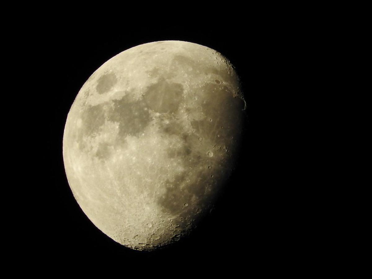 Calendrier Lunaire 2020 Pour Jardiner Avec La Lune