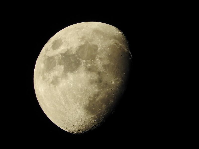 Jardiner Malin Calendrier Lunaire 2022 Calendrier lunaire Mai 2021 : jardiner avec la lune