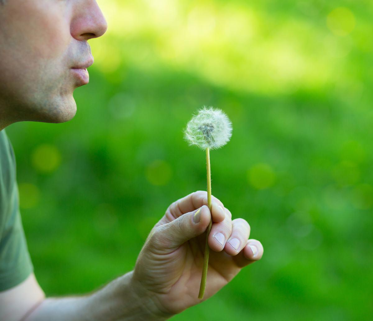 Asthme plantes traitement naturel