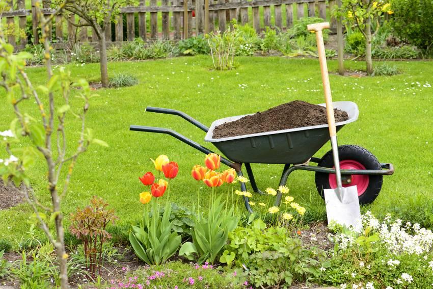 Coronavirus jardinage jardin activités