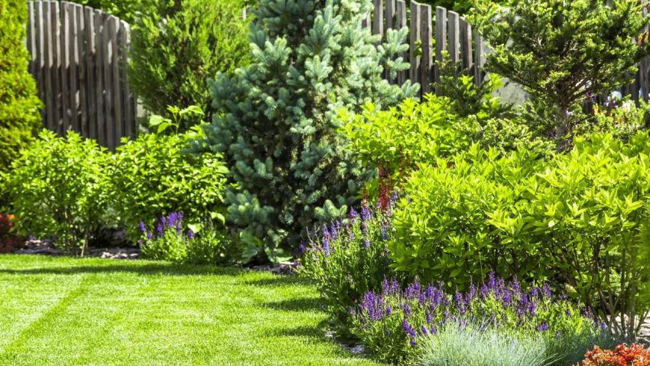 Aménagement D Un Parterre De Fleurs créer un parterre, un massif de fleurs | 7 règles à suivre