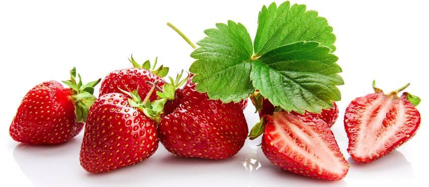 varietes de fraises