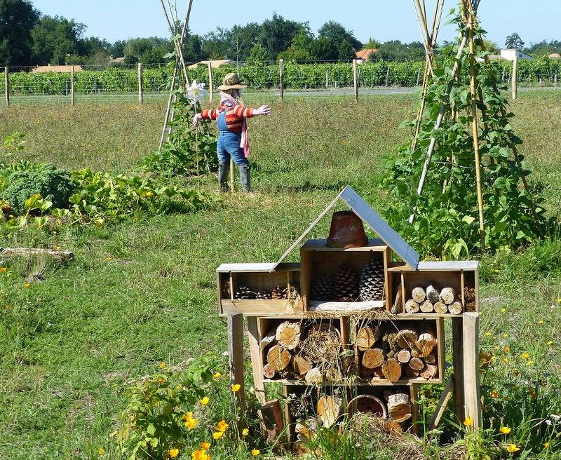 Permaculture autosuffisance