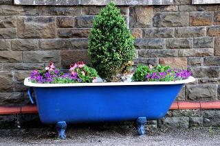 baignoire plantes jardin