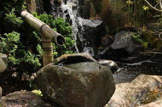 eau dans un jardin japonais