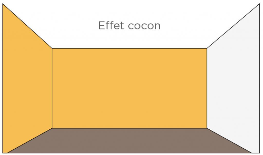plantes pour effet cocon cour ombre