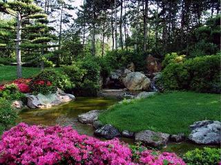 plantes zen pour jardin japonais