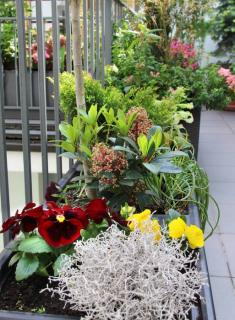 pots et jardiniere deco design