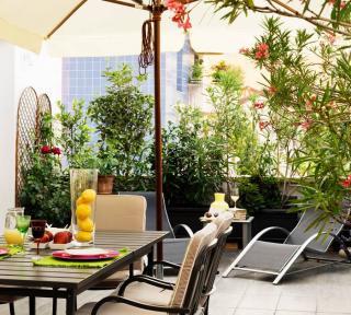 Arbustes pour Vis a vis balcon