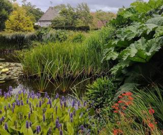 bassin jardin anglais