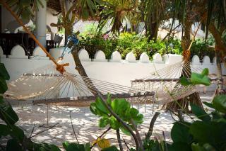 idee mobilier Jardin exotique