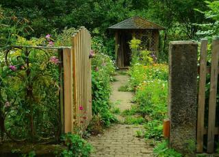 jardinage juin travaux