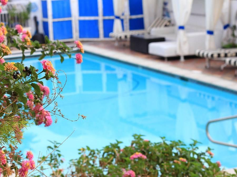 Amenagement piscine info