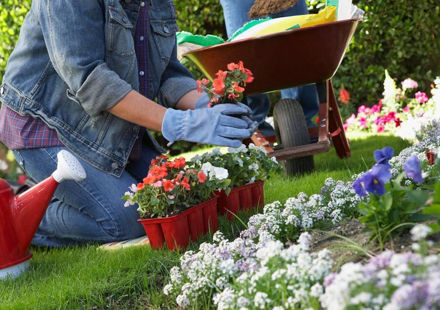 Faire une bordure fleurie