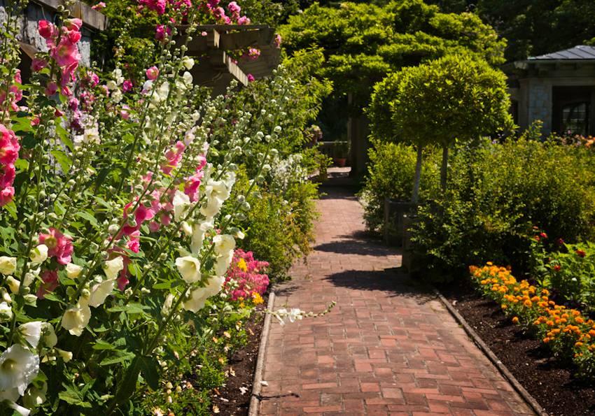 amenager jardin devant maison idee plantation