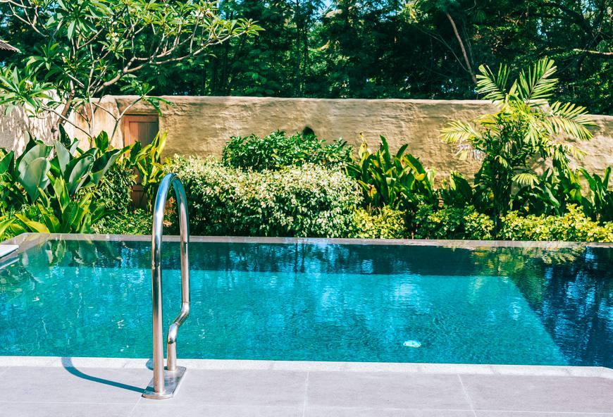 Plantes pour bord de piscine