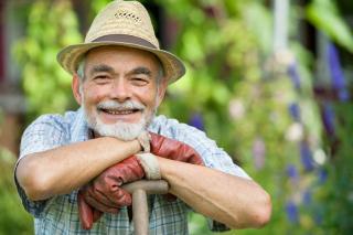 jardinage ete